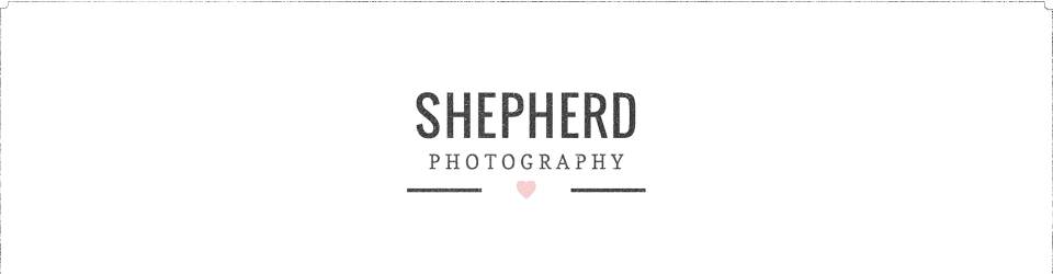 Shepherd Photography logo